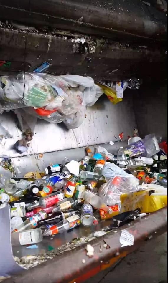 有清潔工人被市民拍攝到將廢玻璃樽。Hongkee Yuen影片截圖