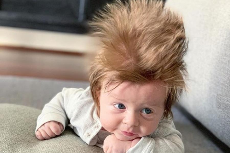澳洲一名16週大的男婴,因为他不得了的「髮量」而备受瞩目。 IG图片