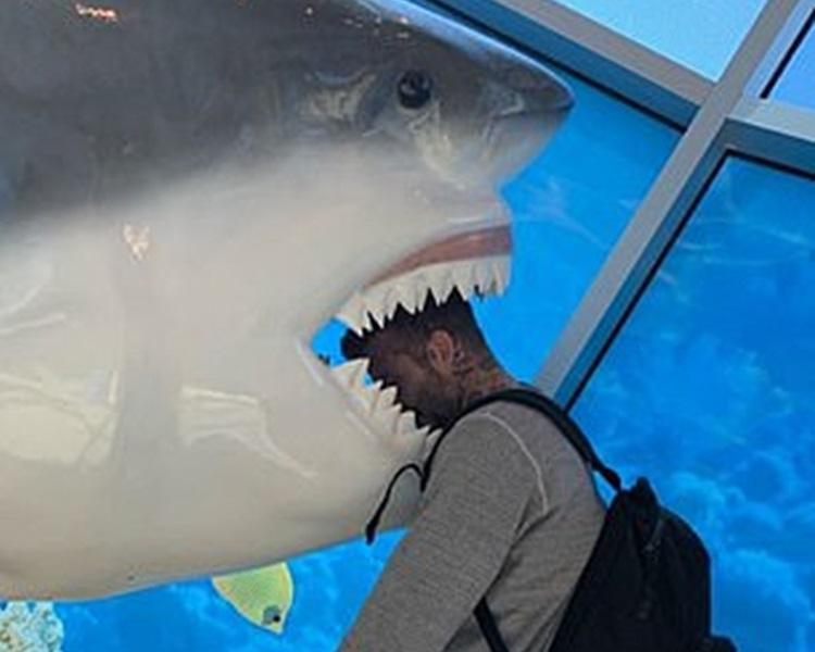 碧咸被鯊魚咬頭。Instagram