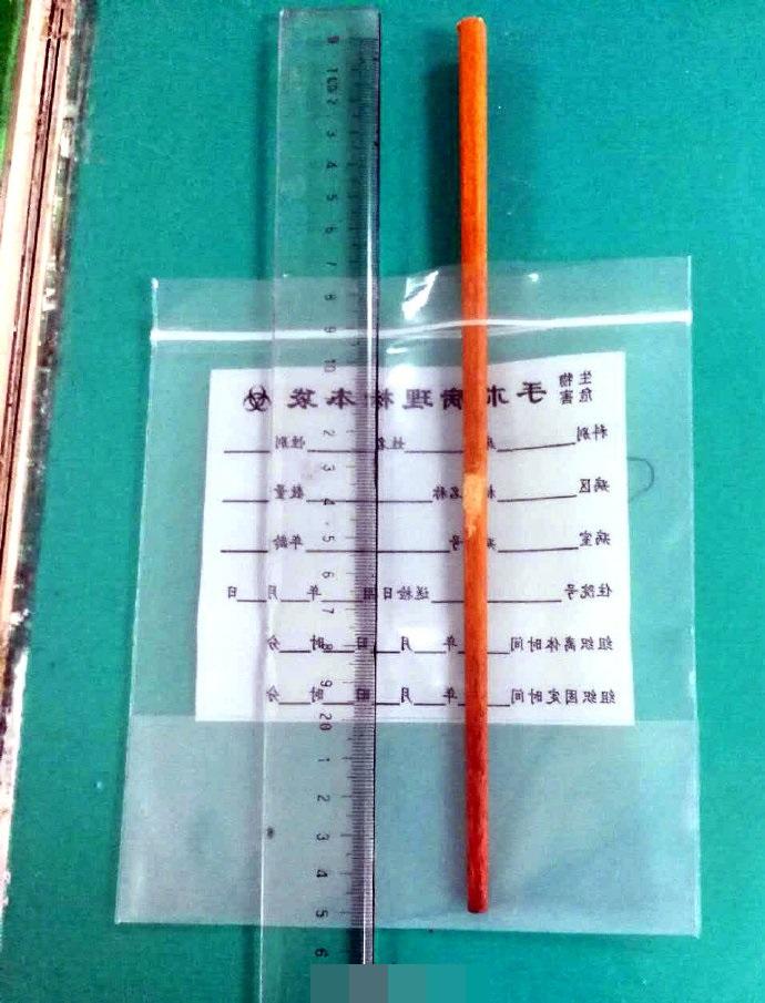醫生連夜為女童進行手術,順利取出筷子。網圖