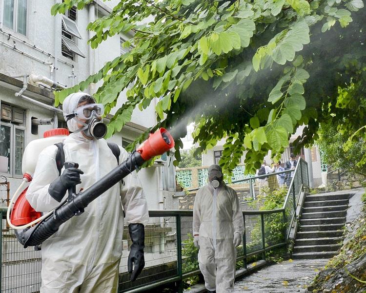 工作人員在民居附近100米範圍內樹木茂盛的地點每星期使用霧化處理方法,殺滅成蚊。