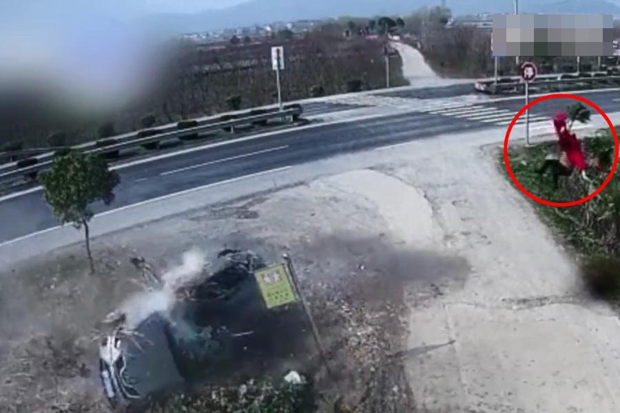 男子因疲勞駕駛撞樹後,妻兒被拋飛超過10米。  影片截圖