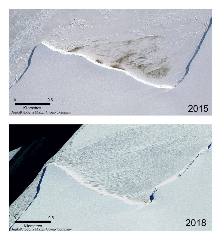 卫星图片显示牠们的数量逐渐减少。AP