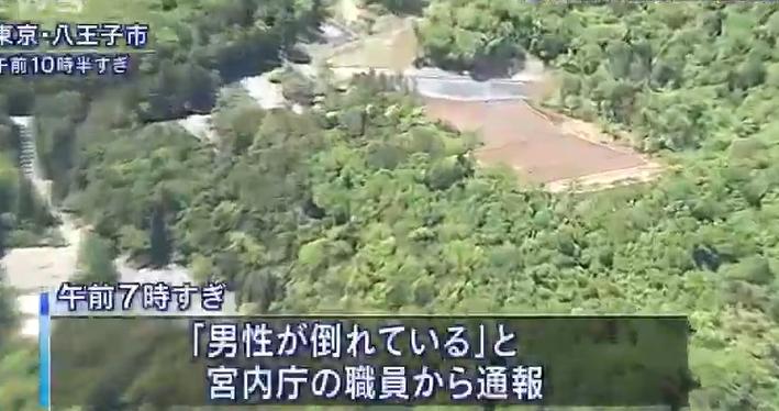 「武藏陵墓地」位于东京八王子市。日本朝日新闻截图