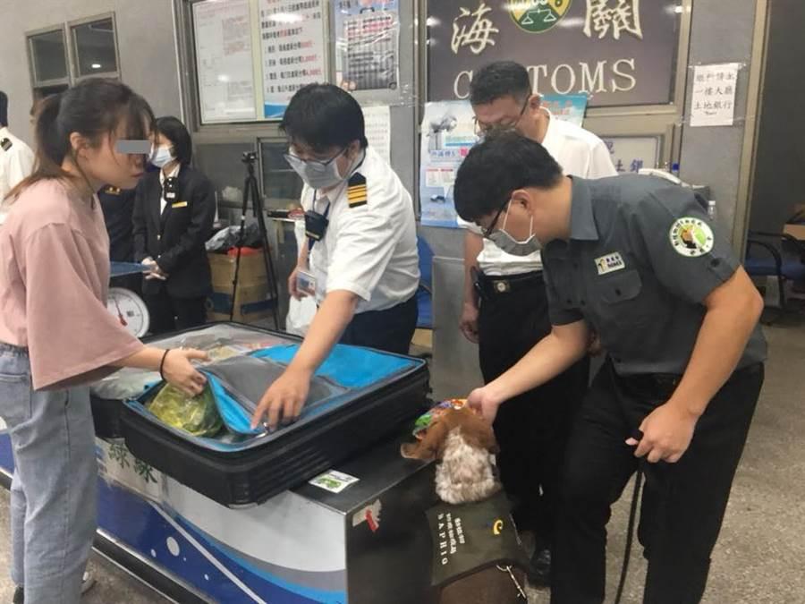 台灣早前已在機場對香港旅客全面檢查行李。網上圖片