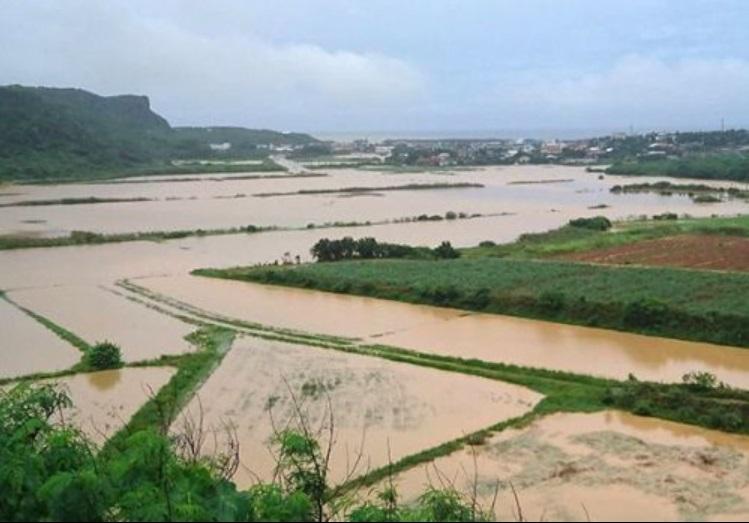 洪水淹沒農田道路。網上圖片