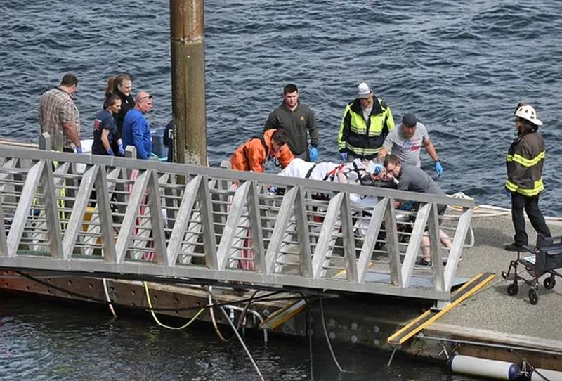阿拉斯加两架水上飞机发生相撞。(网图)