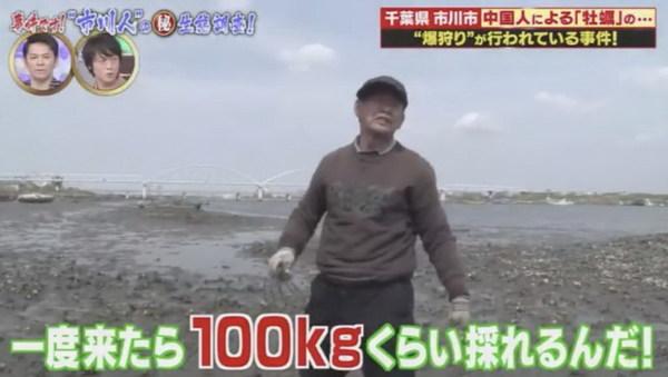 有中國遊客接受日本節目訪問時,稱自己每日可挖100公斤新鮮生蠔。網圖