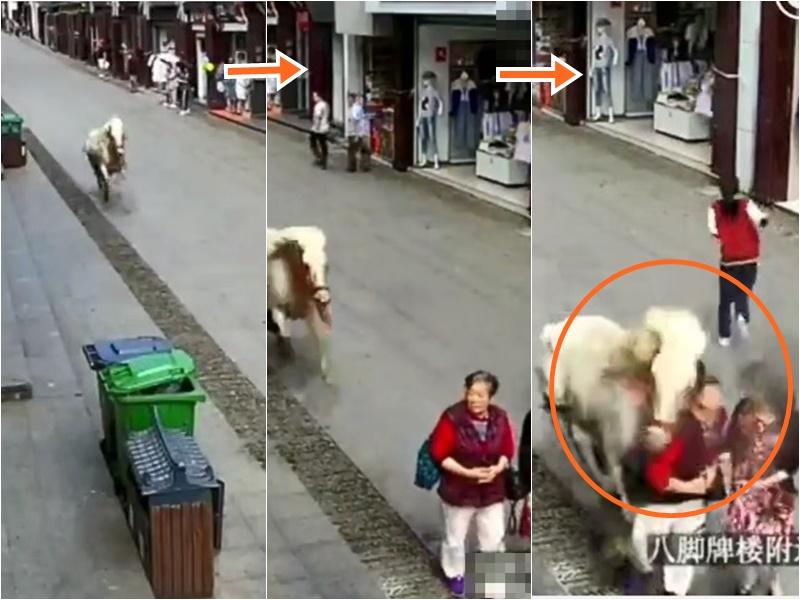 安徽有一匹馬突然當街狂奔起來,撞傷路人,被民警開槍擊斃。影片截圖
