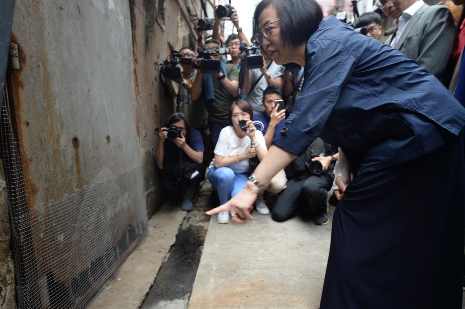 陳肇始下午到訪深水埗區,視察防治鼠患工作。