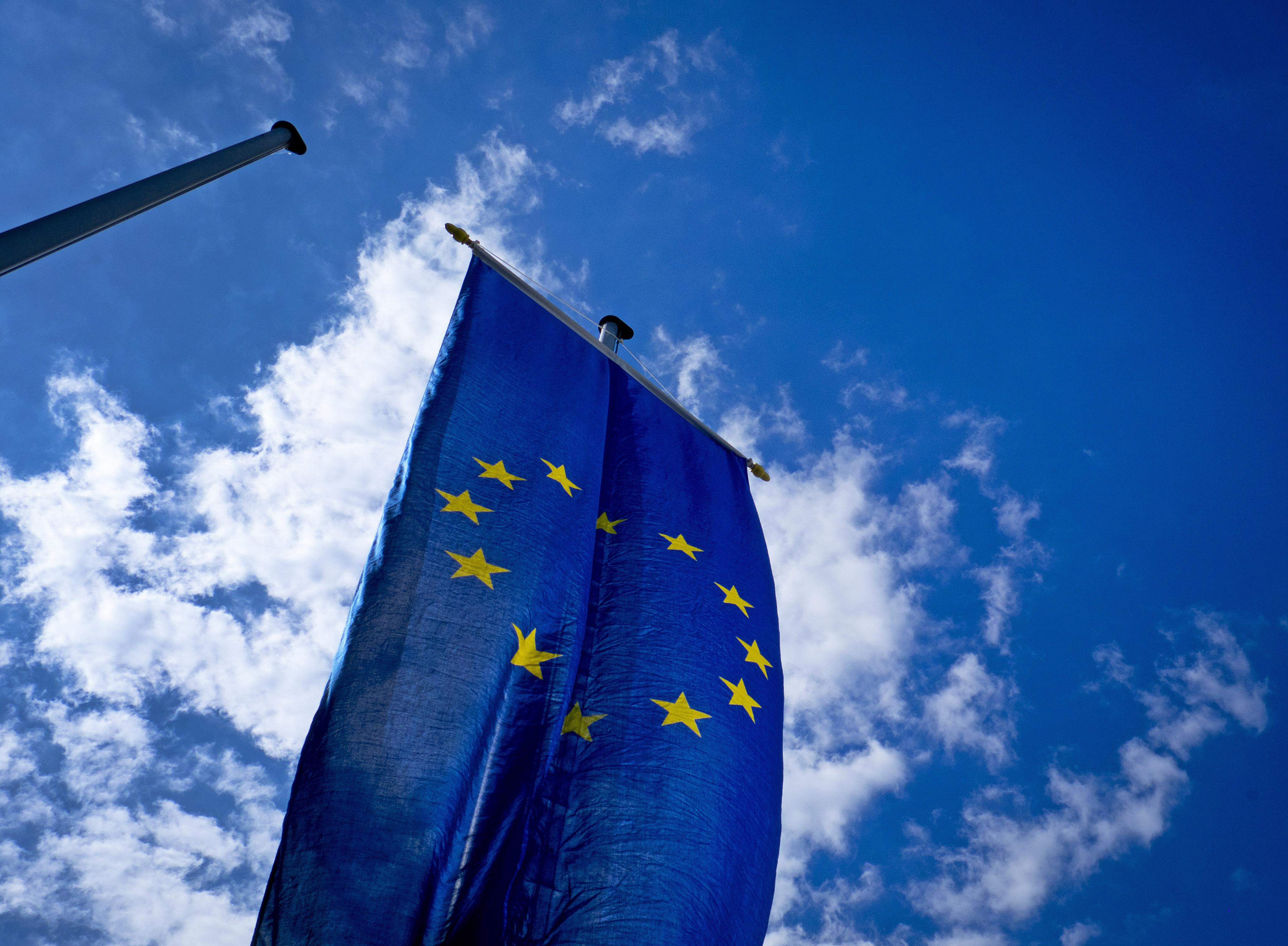 欧洲议会选举投票率创20年新高。