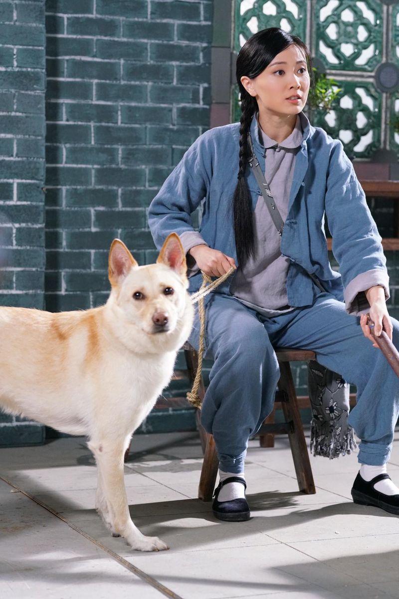 朱晨麗大讚這位狗對手好乖。