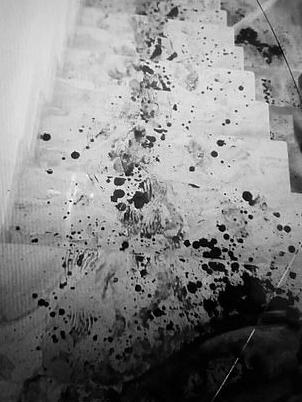 豪宅的楼梯留下一条血路。(网图)