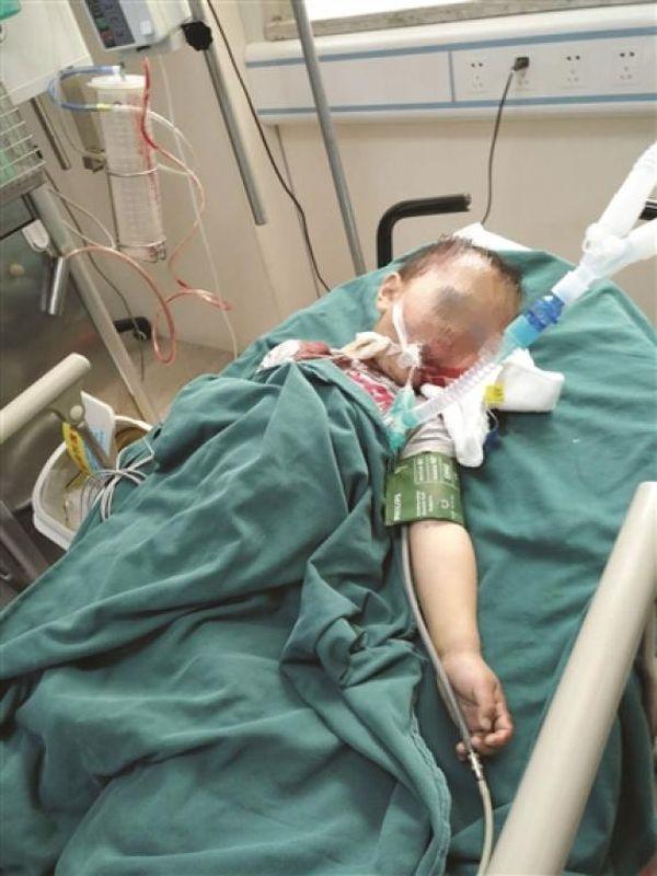 男童送院抢救无效死亡。网图