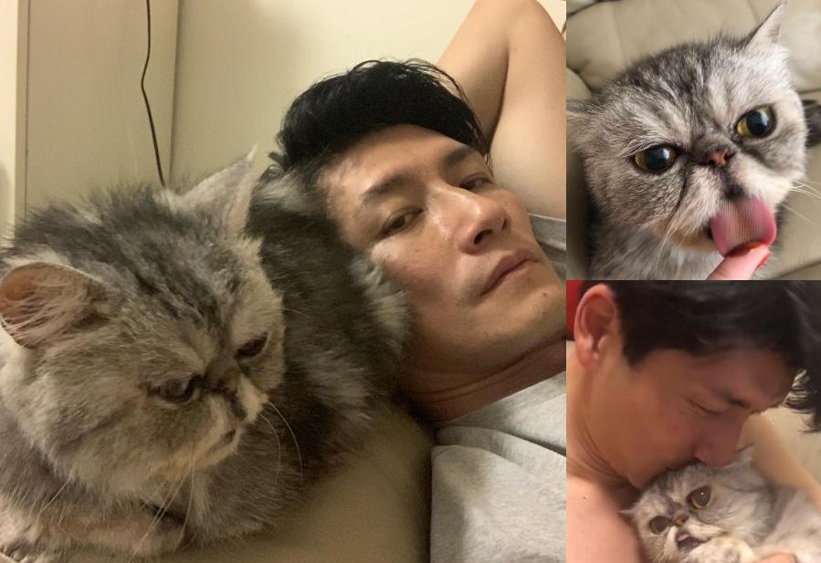 袁文傑上載了與愛貓「囝仔」的合照。袁文傑ig