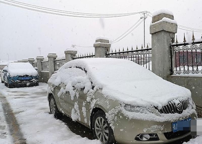 青海玉樹州曲麻萊縣,突降鵝毛般的大雪。(網圖)