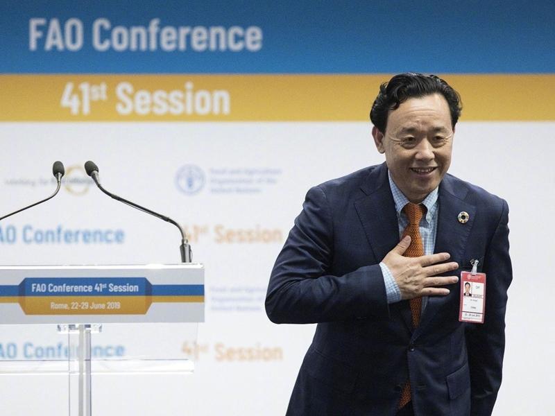 中国农业农村部副部长屈冬玉当选联合国粮农组织新任总干事。 网上图片