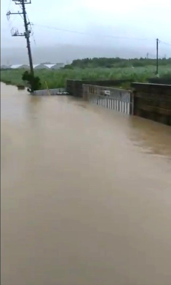 沖繩有馬路變成河流。網上圖片