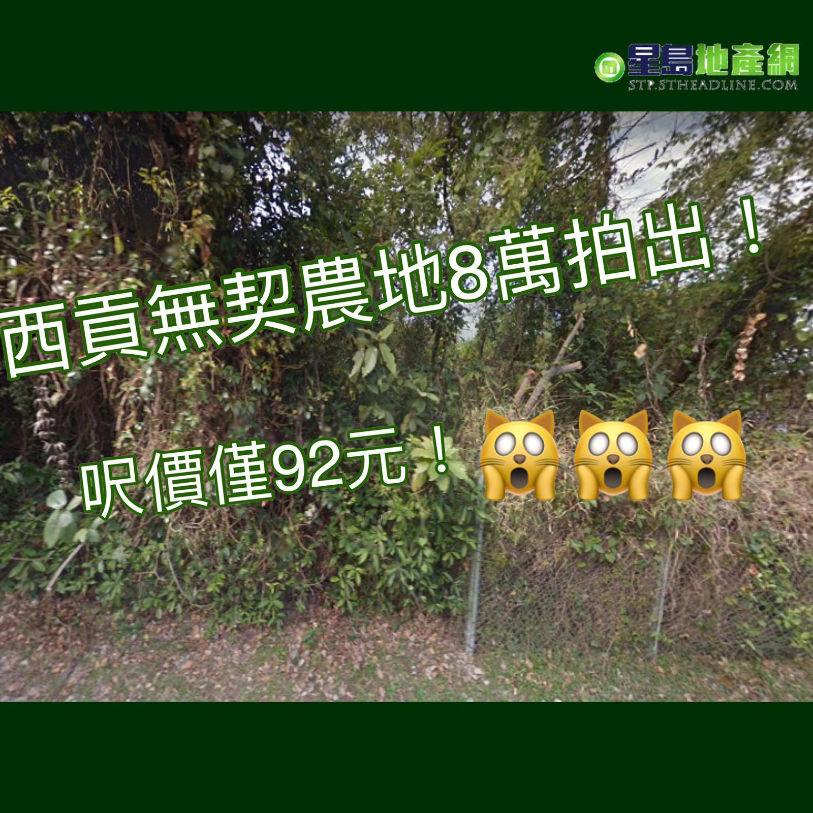 西貢兩幅無契農地8萬拍出