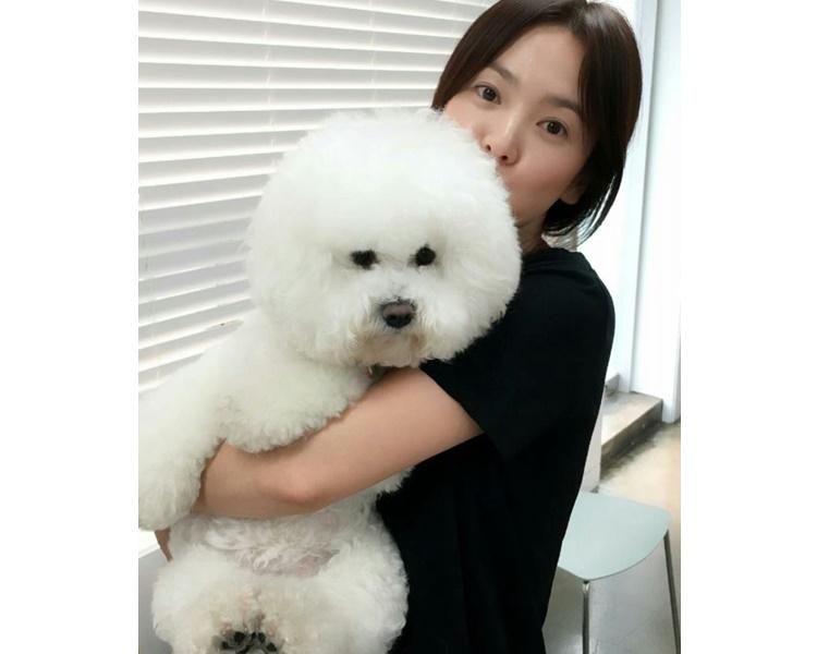 喬妹愛狗如命,與老公剛剛相反。