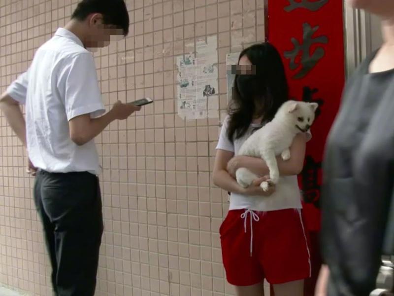 一位女子下來將狗抱起。網圖