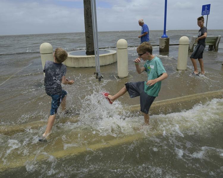 有小朋友不怕危险在岸边玩水。