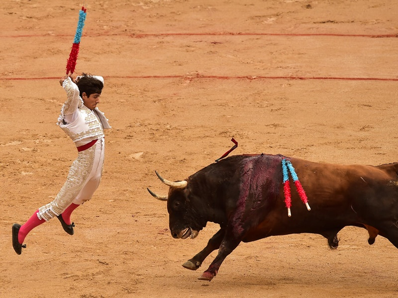 西班牙奔牛节共八人被牛角刺伤。