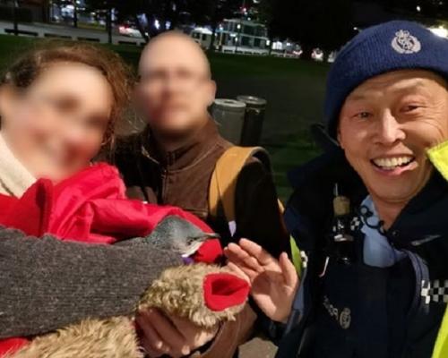 紐西蘭2隻企鵝訪壽司店 警察帶走又逃回