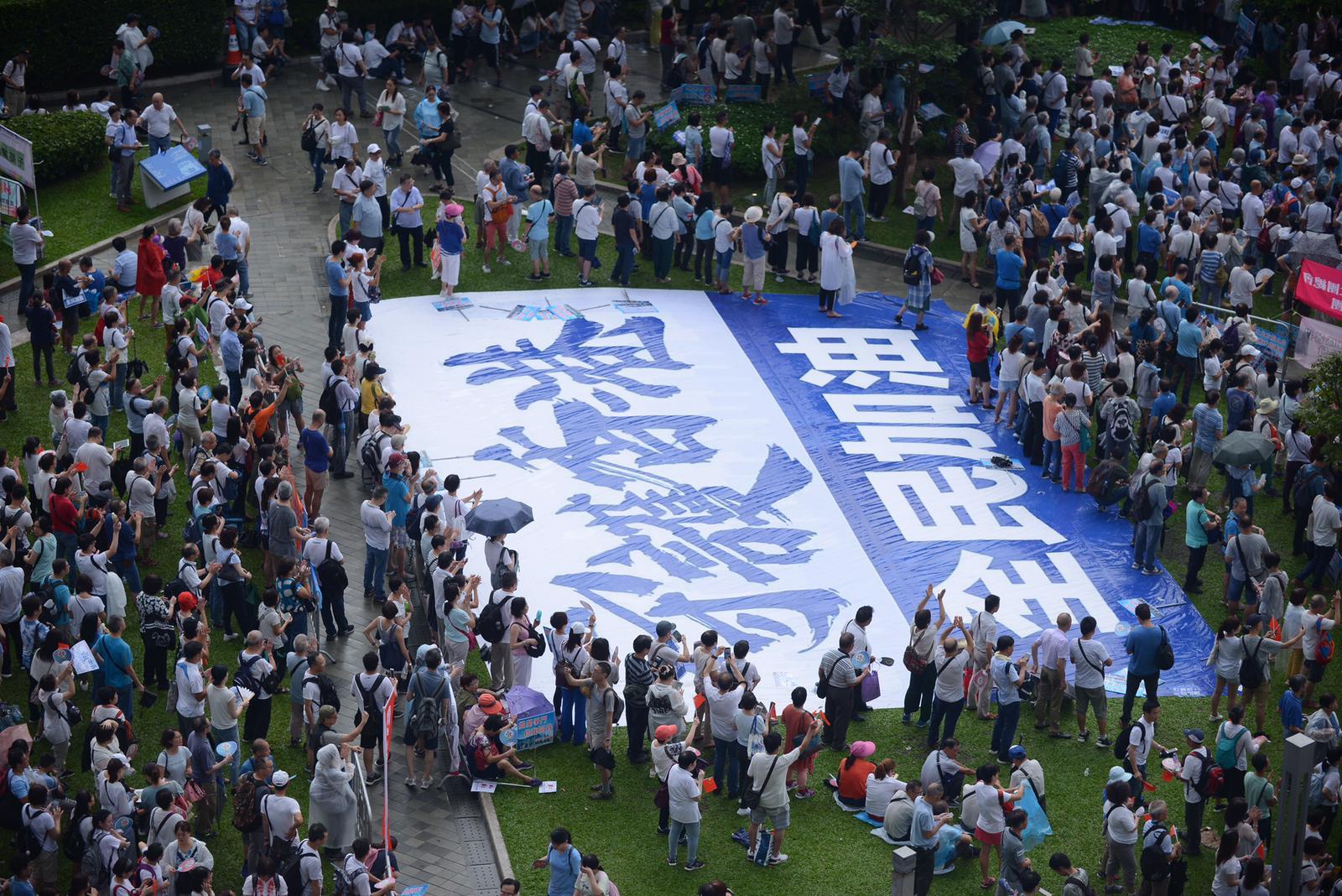 建制派發起「守護香港」集會