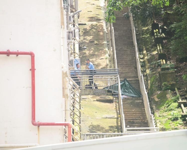 現場是柴灣興華邨裕興樓對開的山坡。楊偉亨攝