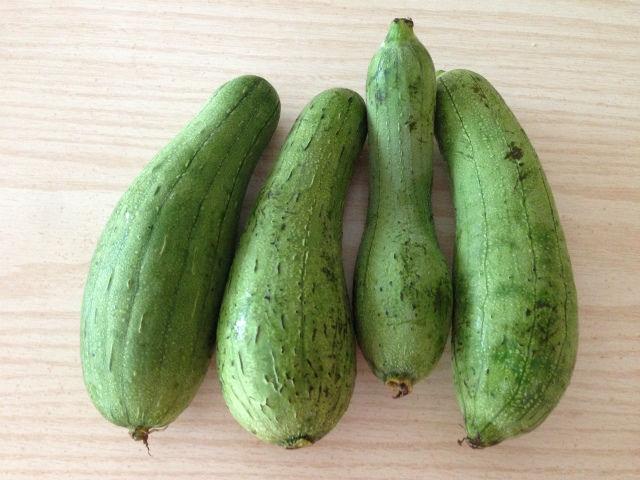 絲瓜,網上圖片