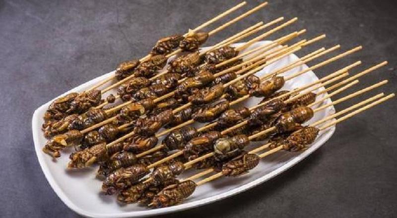 內地民衆喜歡吃炸蟬。網上圖片