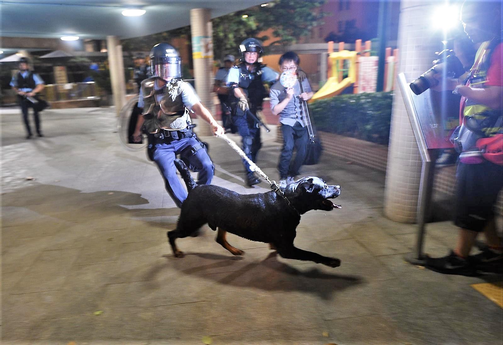 警方一度出動警犬。