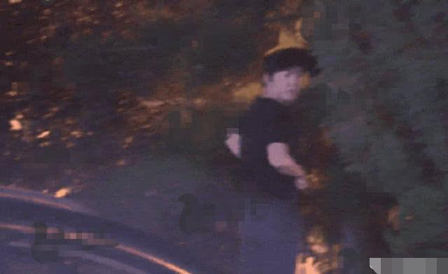 鋼琴王子李雲迪被拍到當街小便。網圖
