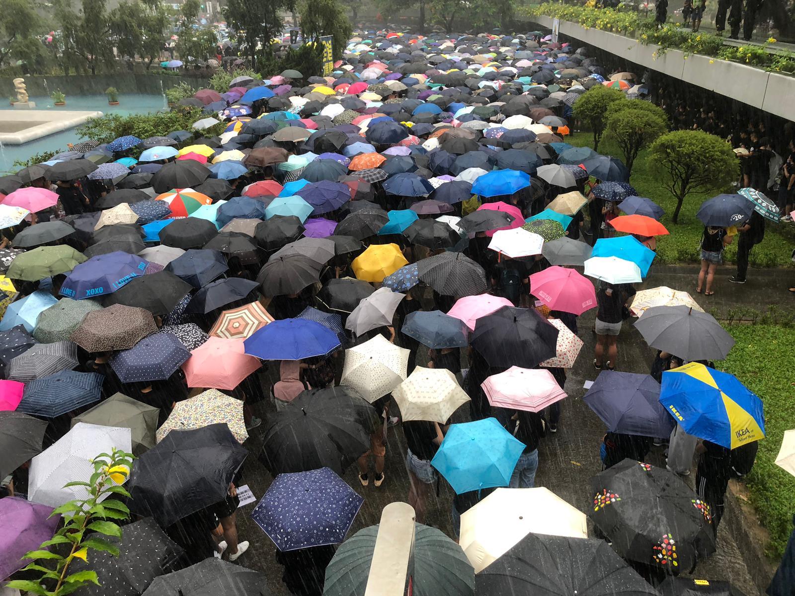 教育界在大雨下遊行。