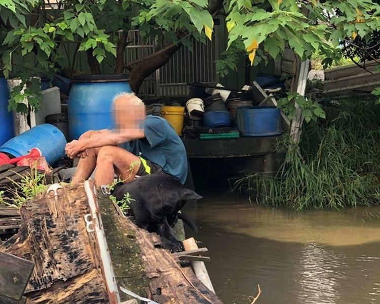 一直飼養流浪狗的八旬老翁失落地坐在河邊。網圖