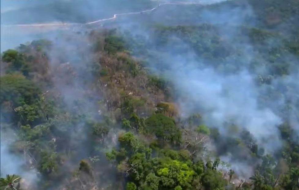 巴西亞馬遜熱帶雨林遭受火災破壞。網上圖片