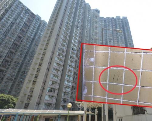 大埔運頭塘邨逾50單位現「踩線」符號  警方跟進調查