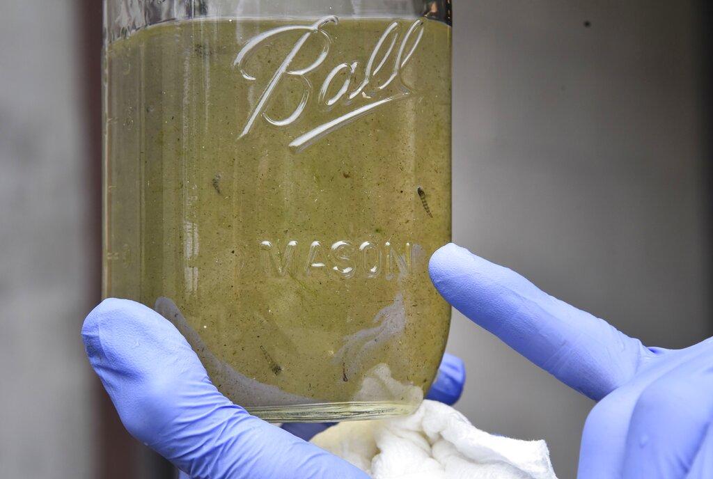 世衛指出,現時在食水內找到的微膠粒水平,未危害人類健康。AP