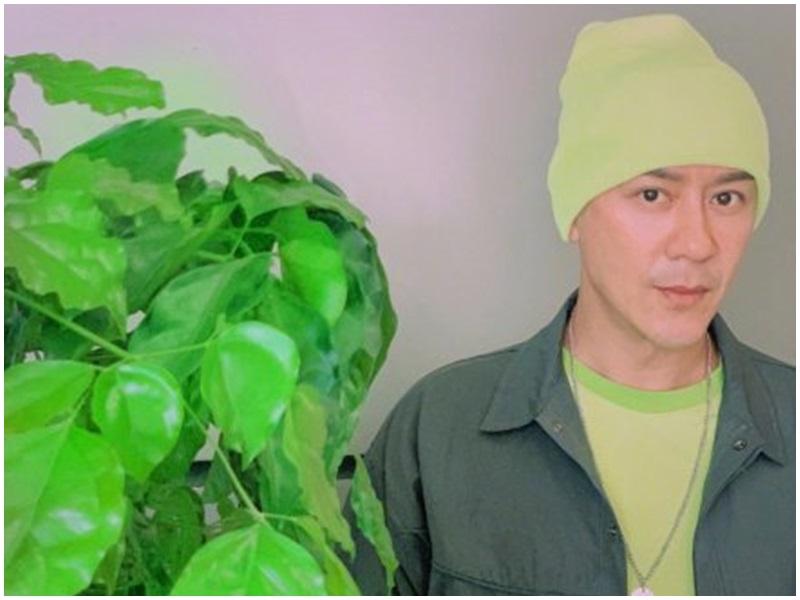 陳浩民綠帽造型。陳浩民微博
