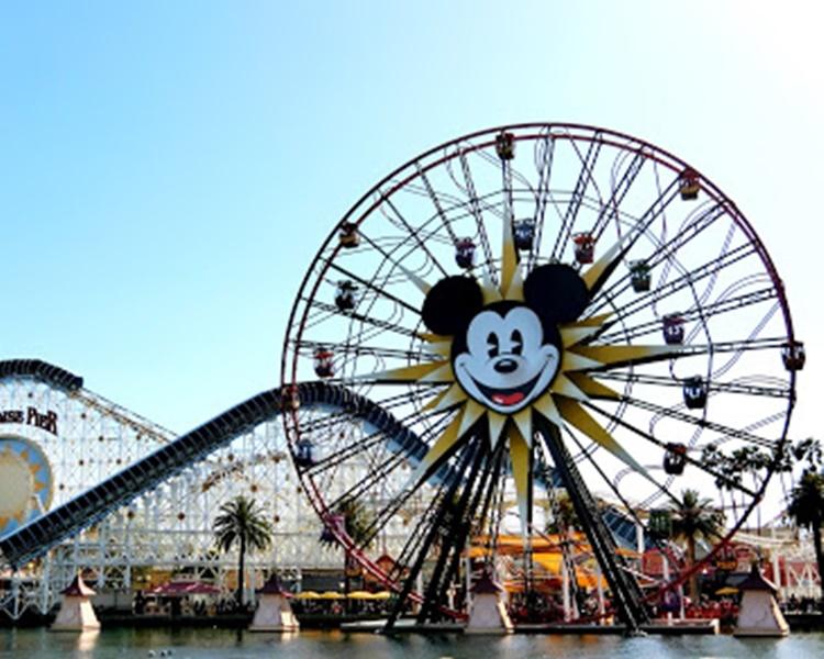 患病少女曾進入迪士尼樂園及加州冒險樂園遊玩。網圖