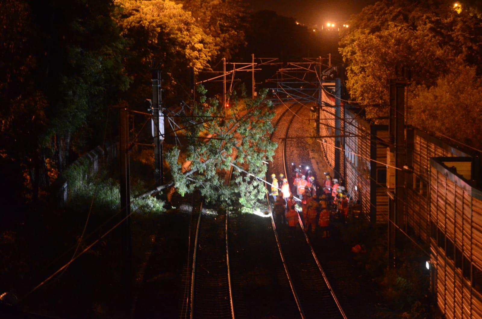 架空電纜受樹木倒塌影響出現跳制。