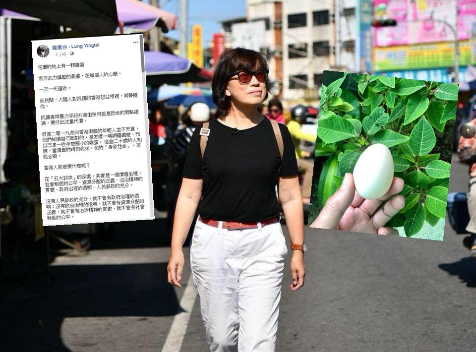 龍應台FB圖片