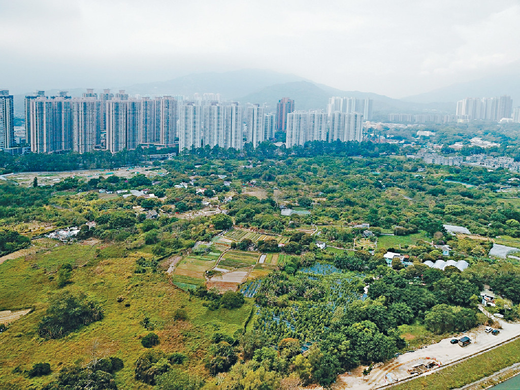 民建聯促引用《收回土地條例》,收回新界農地。資料圖片
