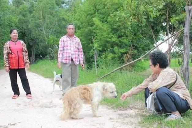 終於「皇天不負有心狗」等到主人回來找牠。