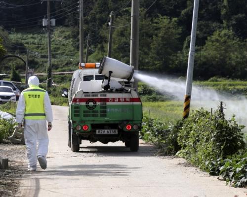 南韓爆發首宗非洲豬瘟病例 文在寅:嚴防疫情蔓延擴散