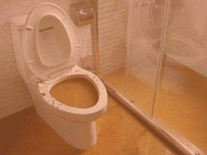 少女放學回家衝入廁所,10分鐘後離奇身亡。(網圖)