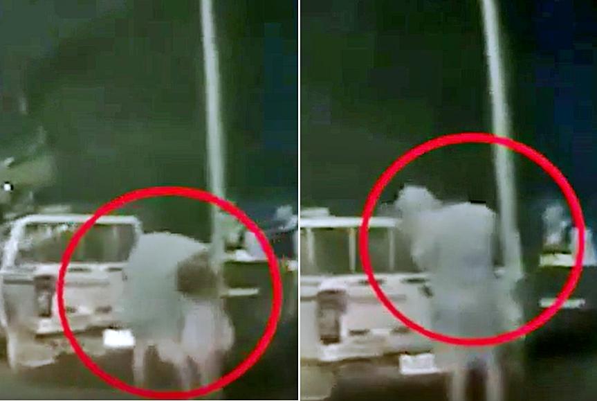 廣東肇慶近日網傳一段「男子打人被傳喚後,將女兒扔上警車車尾」的片段。 影片截圖