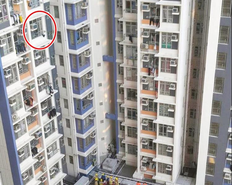 龍逸邨康龍樓命案疑兇妻後從寓所墮下平台死亡(紅圈示)。資料圖片
