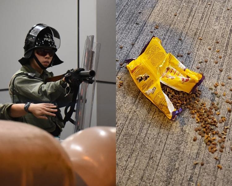 為示威者多次向警察投擲物品,當中有人向水馬擲狗糧,警察舉防暴槍要求離開。